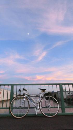 中川運河の野立橋